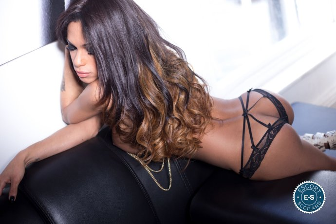 TS Sara Rios is a super sexy South American Escort in