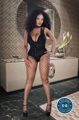 Book a meeting with Tami Hot Chocolate  in Glasgow City Centre today