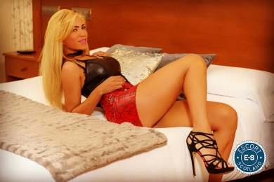 Book a meeting with Alejandra in Aberdeen today