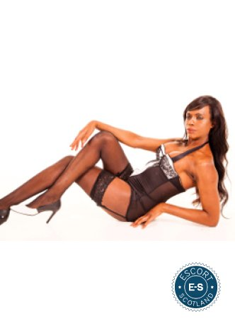 TS Layla is a very popular British escort in Glasgow City Centre, Glasgow
